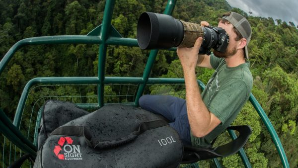 Photographer in jungle